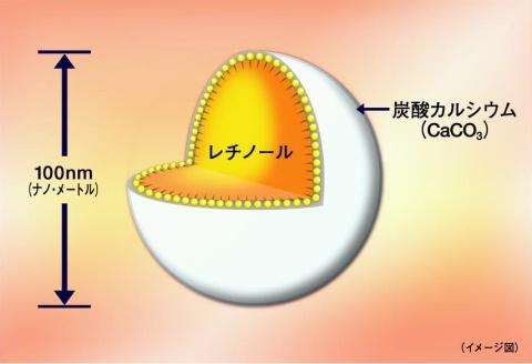 レチノールナノカプセルの構造