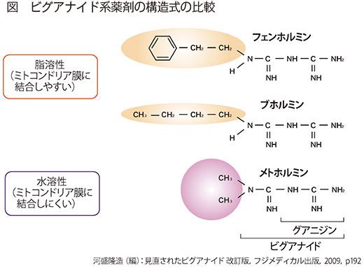 図 ビグアナイド系薬剤の構造式の比較