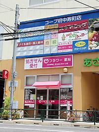 フラワー薬局府中寿町店
