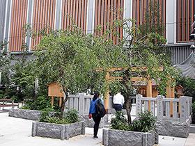 今年は薬祖神社のある「福徳の森」周辺での初開催となる